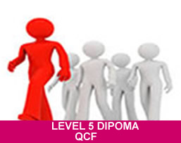 Online NVQ diploma in health and social care.